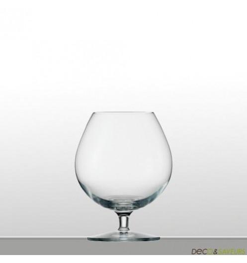 https://www.deco-et-saveurs.com/1732-jqzoom/6-verres-a-cognac-580-ml-stolzle.jpg