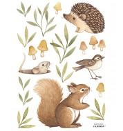 Stickers - Petits animaux de la forêt