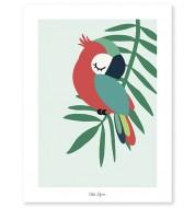 Affiche - Tropica perroquet vert