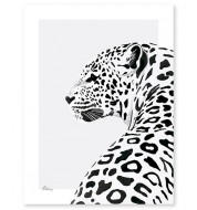 Affiche - Le léopard