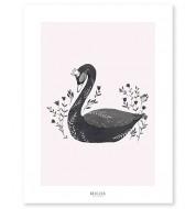 Affiche - Le cygne noir