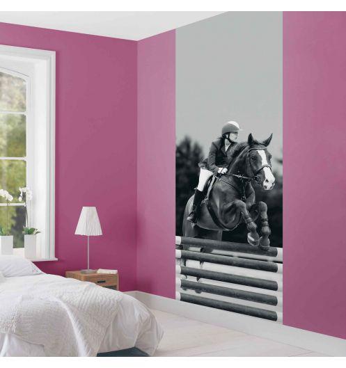 poster g ant panoramique. Black Bedroom Furniture Sets. Home Design Ideas