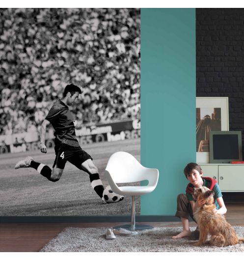 papier peint panoramique poster g ant. Black Bedroom Furniture Sets. Home Design Ideas